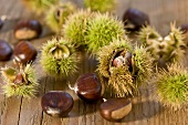 Chestnuts, shelled and unshelled
