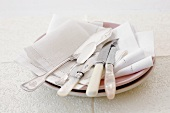 Two plates with fabric napkins and assorted knives