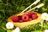 Raspberries in a melon half
