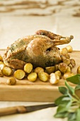 Chicken with sage stuffing and potatoes