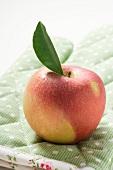 An apple with leaf