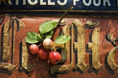 Crab apples on an old sign