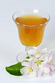 A glass of cider vinegar with apple blossom