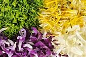 Spruce tips, dandelion, white & spotted dead-nettle petals