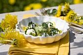 Mozzarella balls with chives, chervil and dandelion petals