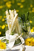 White asparagus, cress, spring onions in preserving jars