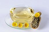 Coltsfoot tea (Tussilago farfara)