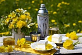 Dandelions and cakes on table