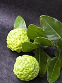 Kaffir limes (Combawa)