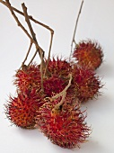 Rambutans on white background