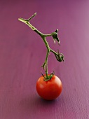 Cherry tomato with stalk