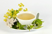 Medicinal tea with yarrow, dead-nettle and lady's mantle