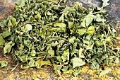 Fenugreek (dried leaves)