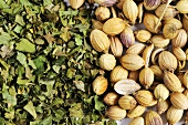 Coriander (seeds and dried leaves)