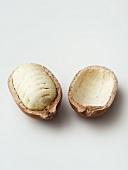 Cupuaçu (Cacao, Theobroma grandiflorum)