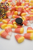 Candy corn with spider and cobweb for Halloween