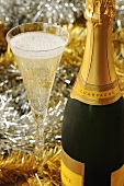Champagne in glass and bottle for Christmas