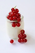 Natural yoghurt with redcurrants