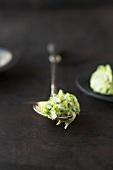 Leeks in béchamel sauce on a spoon