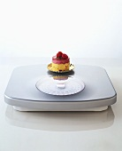 A small cream cake on bathroom scales