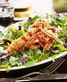 Langoustines on summer salad