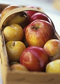 Basket of autumn fruit (apples, plums, pears)