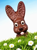 Chocolate Easter Bunny in Easter grass