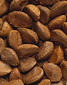 Unshelled Brazil nuts (full-frame)