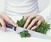 Chopping curled parsley