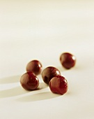 Five red cherries with drops of water