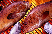 Two strawberry groupers on barbecue