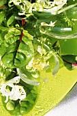 Mixed green salad with salad servers