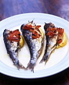 Grilled sardines with tomatoes and lemon wedges