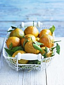 Satsumas in wire basket