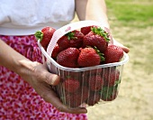 Hands holding a plastic punnet of fresh strawberries