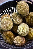 Durians on a market stall, Singapore