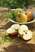 Apples (Cox's Orange Pippin)