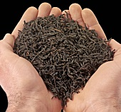 Dried tea leaves in someone's hands (close-up)