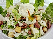 Caesar salad with anchovies and egg