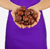 Hands holding sweet chestnuts