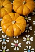 Three baby pumpkins