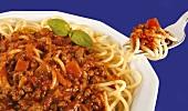 Spaghetti con ragù alla bolognese (Spaghetti with meat sauce)