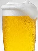 Pils im beschlagen Glas mit Schaumkrone