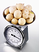 Turnips on kitchen scales