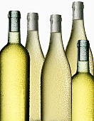 Five bottles of white wine