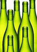 White wine in green bottles