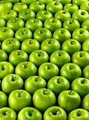 Many 'Granny Smith' apples