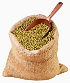 Mung beans in jute sack with scoop