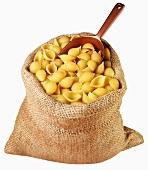 Pasta shells in jute sack with scoop