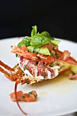 Lobster with cocktail tomatoes, leeks, asparagus and basil